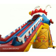 Outdoor Kids Dry Inflatable Slide For Sale