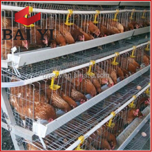 H Type Broilers Rearing Cage Design Layer Chicken Cages Use Poultry Farm