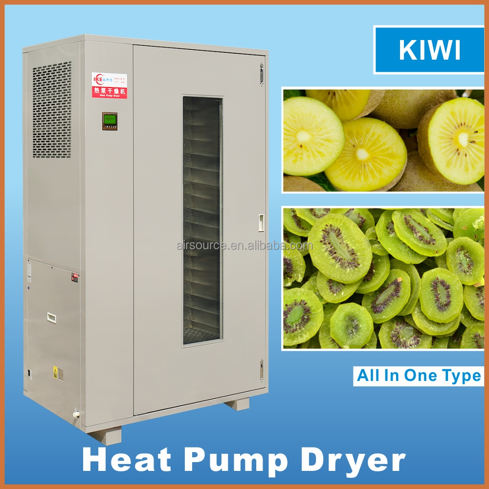 Dired fruits mango /longan/<strong>apples</strong> Industrial dehydrator IKE heat pump dryer machine on sale