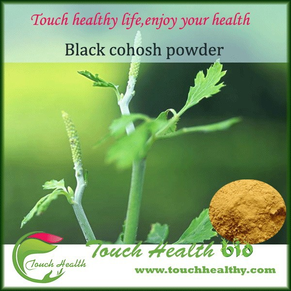 2017 Touchhealthy supply Black Cohosh Extract(Triterpene Glycosides)