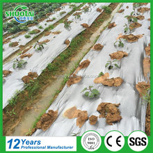 100% Biodegradable plastic transparent pe protective film, custom design agricultural mulch film cover