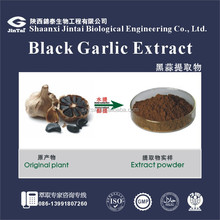 Best price black garlic extract 1% allicin black garlic extract powder