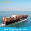 consolidation in warehouse ,container sea shipping cost China to Brazil --Skype: colsales02