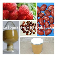 Factory supply food grade semen litchi extract powder lychee seed extract 40% 50% 70% Polyphenol (UV)