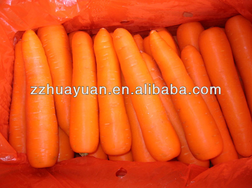 2015 New Crop Fresh Carrot