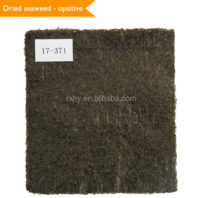 Sushi seaweed raw material supplies dried agar factory seaweed