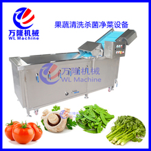 preferential promotion fruit and vegetable sterilizing machine