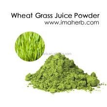 Best Sell GMO Free wheatgrass powder