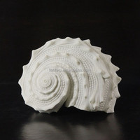 ocean series conch shell ornament