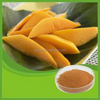 Export high quality hotsell african mango extract slim diet