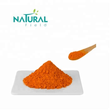 Turmeric Root Extract Bulk Curcumin Powder