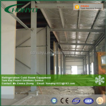 -18 degree Freezer Cold room/cool storage Polyurethane Sandwich Panel