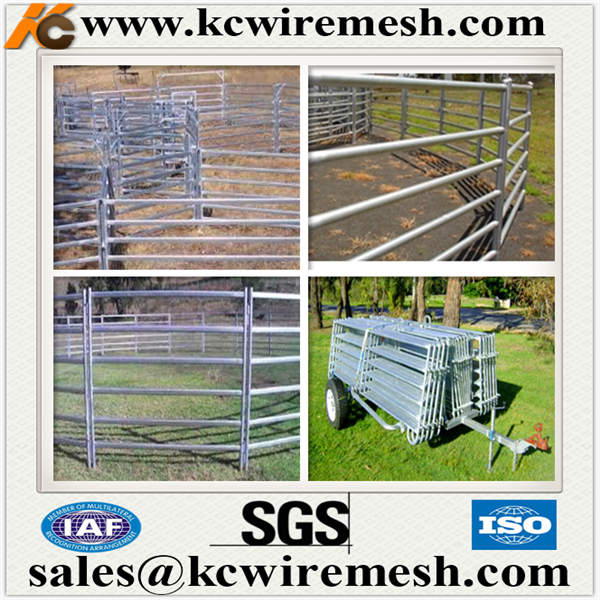 Factory!!!!!!! Kangchen horse paddock fence/goat & sheep panels/Welded Metal rails Cattle fence
