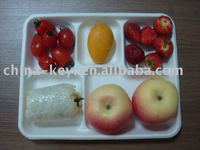 5 compartment school lunch tray
