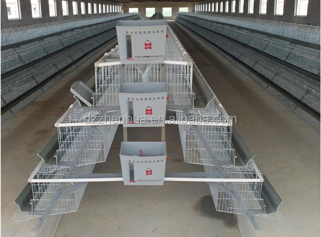 layer poultry cages for kenya farms /layer poultry cages for nigeria/africa (Lydia : 0086.15965977837)