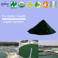 100% Natural Pure Fresh Extract Organic Spirulina Bulk Powder Balance Immunity Boost Energy