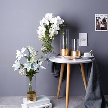 Wholesale clear glass vase cylinder for decoration