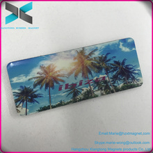 High Quality OEM Glossy EVA Promotional Fridge Magnet