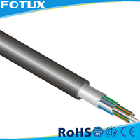 China Manufacturing Dual Core Fiber Optic Cable