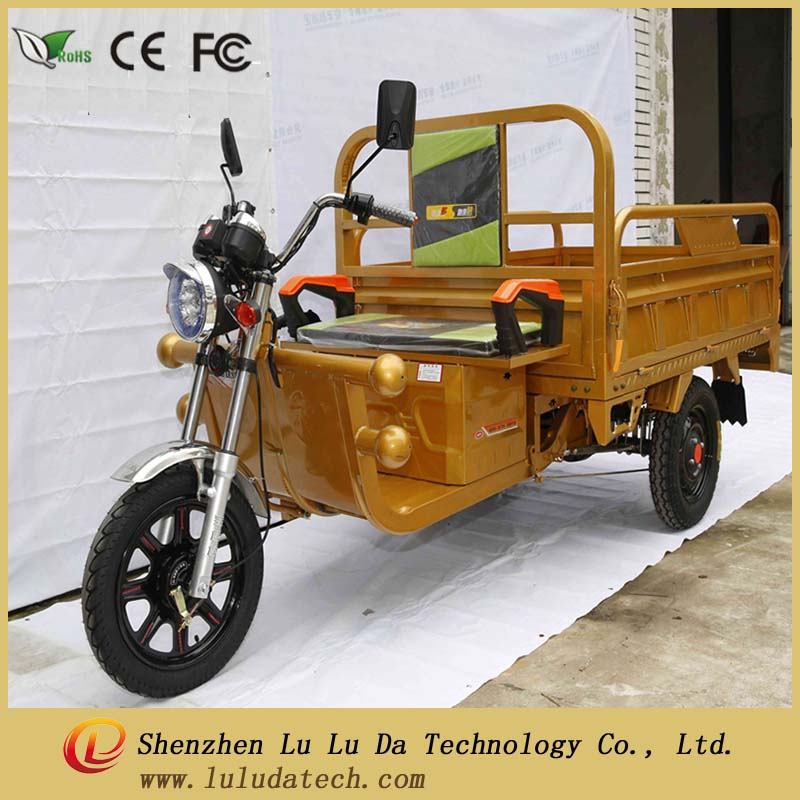 48V 1000w 18pipes controller Hydraulic shock absorber Rear Axle Differential motor cargo tricycle for sale