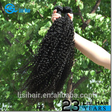 wholesale raw unprocessed virgin hair soft free shipping malaysian hair closures