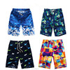 Hot Summer Mens Shorts Men Beach