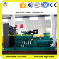Good quality bio gas generator with CE cetificate