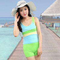 2015 stripes female fission swimsuit Boxer belly show thin conservative movement model of hot spring bathing suit