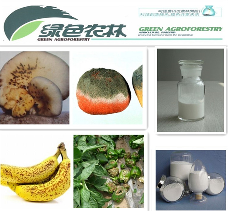 Agrochemical systemic fungicide Prochloraz 97%TC 45%EC 25 EC
