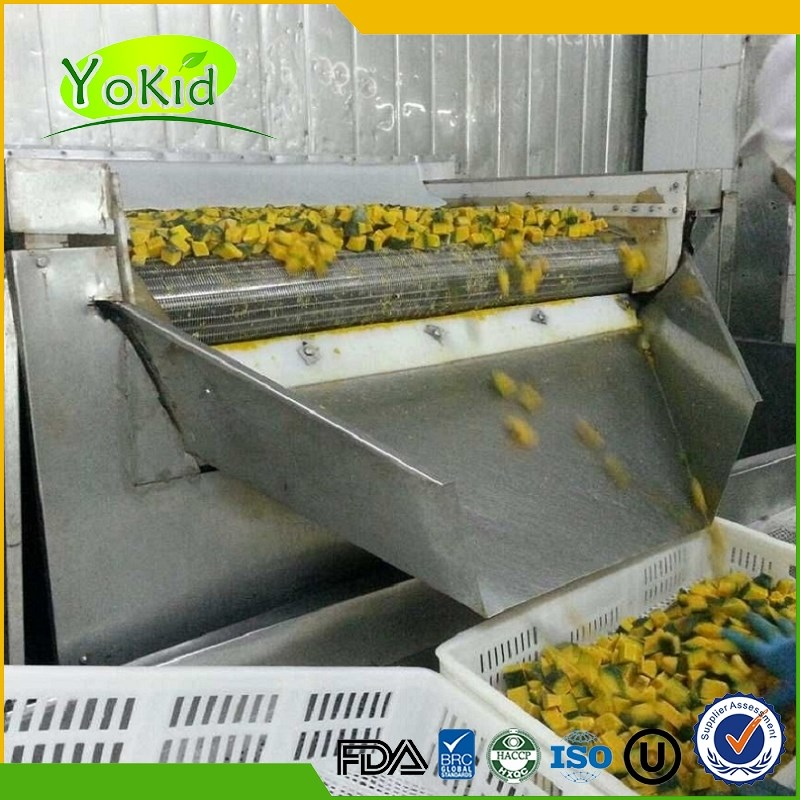 New Crop IQF Frozen Diced Pumpkin steamed / blanched common cultivation