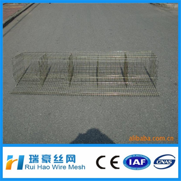 Full hot galvanized h type chicken cage