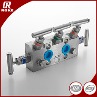 Stainless Steel 5 Way Valves Manifolds Natural Gas Valve