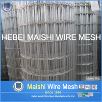 Low carbon steel galvanized welded rabbit cage wire mesh