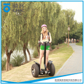 fashion 2 wheel electric chariot used by lots of people