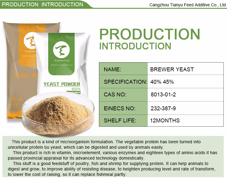 Feed Beer Yeast Powder 45%