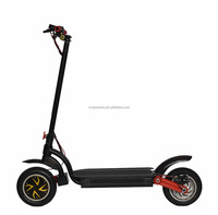 Super Power Folding Electric Scooter 800W With Rechargeable Battery