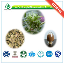 Manufacturer Supply GMP Certificate 100% Pure Natural Tribulus Terrestris Extract Saponins 90% in Bulk