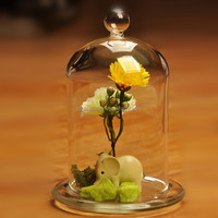 hand blown factory price decorative dome glass for home decoration