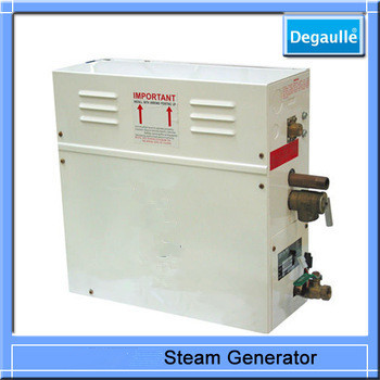 2014 China Price 12kw Steam Generator ozone steam sauna for sale