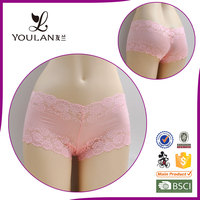 Amazing Secrets Perfectly Cute Girl Lovely Girl Transparent Sheer Lace Panties For Woman Underwear