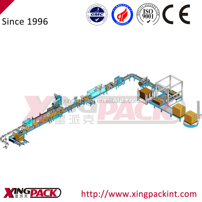 pick and place type packing and palletizing packaging machine for plastic bag pouch