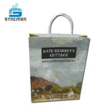 Fancy Custom Design Printed Kraft Paper Bags for Craft Shop