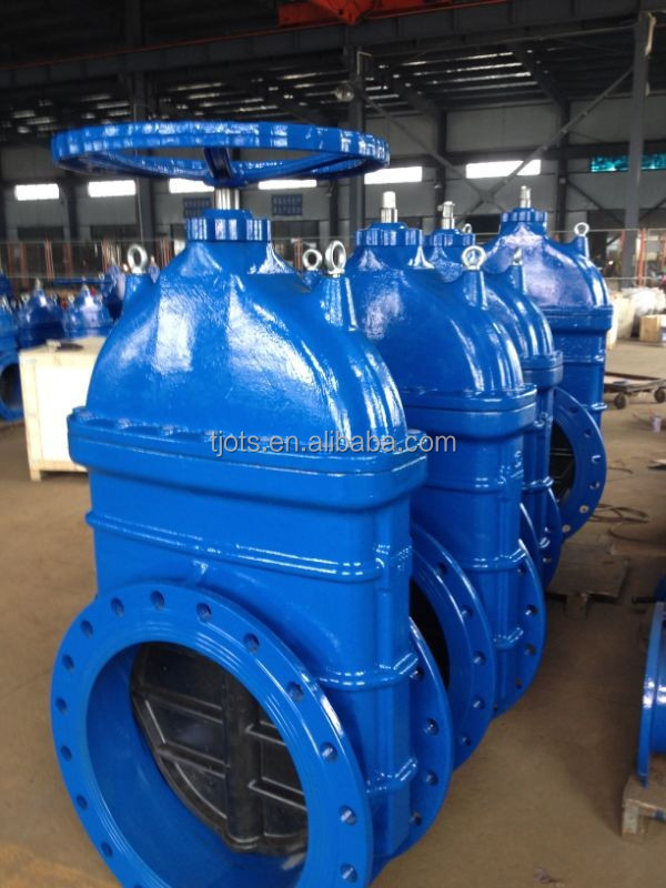 Big size with lifting lug gate valve