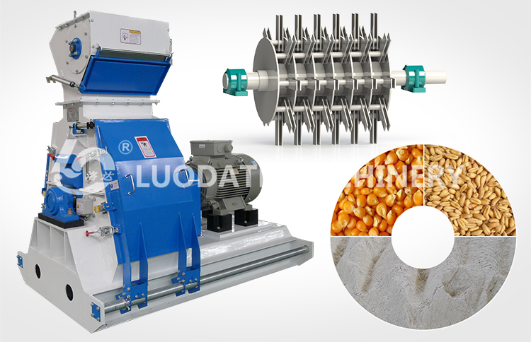 chicken machines/animal feed plant/chicken feed plant