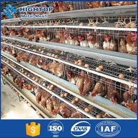 best design A-type high quality chicken nesting boxes for chicken farm