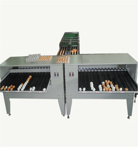 Hot Sale Egg Grader/egg Sorting Machine/egg Grading Machine