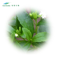 Steviol Glycosides 90~98% & Reb A 40~98% from STEVIA EXTRACT