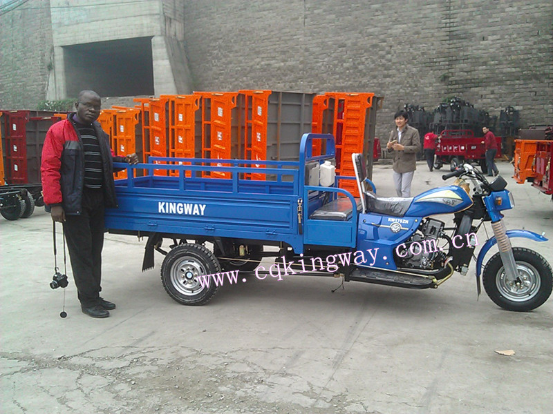 China cheap 3 wheel cargo trike for sale