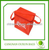 Beautiful PP Woven Cooler bag,insulated lunch cooler bag with shoulder strap,insulated disposable cooler bag