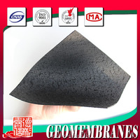 2.5mm HDPE geomembrane with double textured